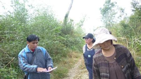 P100069到底要怎樣讓專家學者可以看得到竹林裡的地貌?7